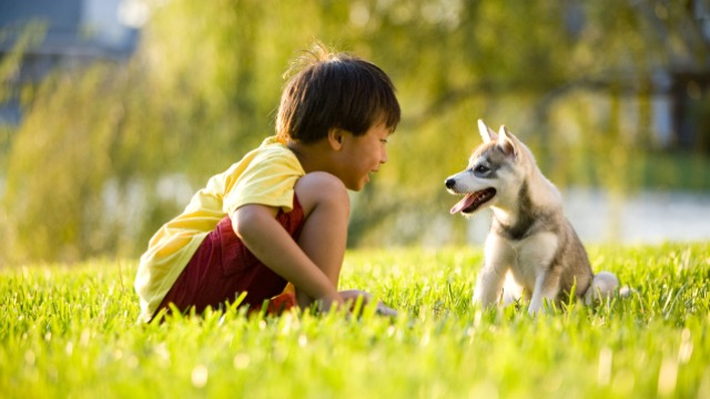 PLAYTIME. Bonding helps strengthen your pet's body and mind