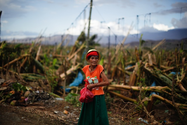 LOST. The banana plantations of Compostela Valley, livelihood to thousands, were lost in a single night. Photo by John Javellana