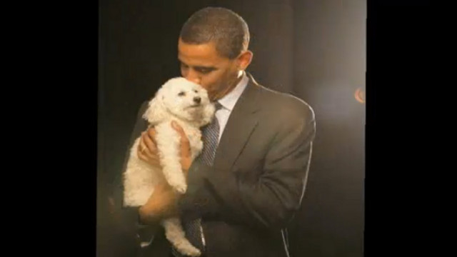 ANIMAL-LOVING SENATOR. Now the US President, Barack Obama gave his word to only rescue -- not buy -- dogs. Screen grab from YouTube (janaandBaby)