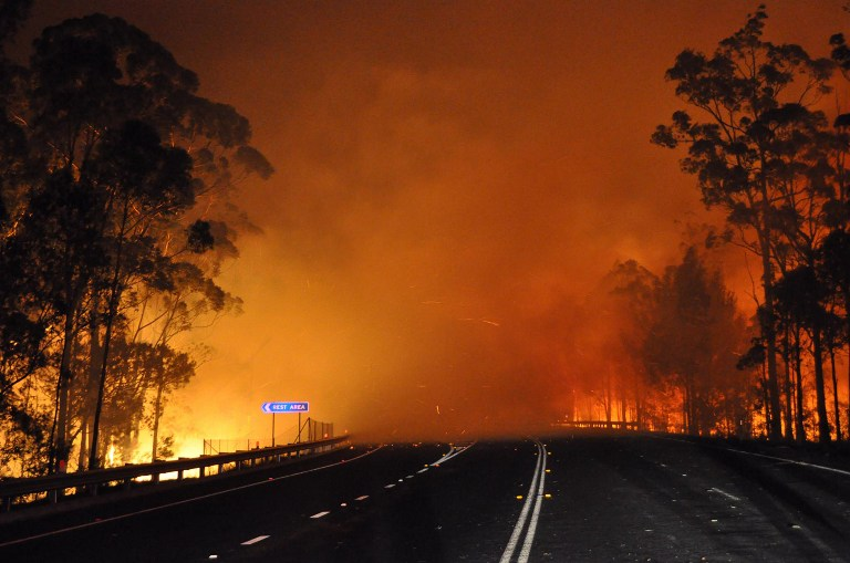 This handout picture taken late on January 8, 2013 and provided by New South Wales Rural Fire Service (NSW Rural Fire Service) on January 9, 2013 shows trees burning and smoke billowing from a fire along the Princes Highway at Deans Gap in the Shoalhaven area in New South Wales. AFP PHOTO / NSW Rural Fire Service