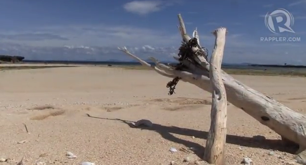 DRIFTWOOD FROM THE PACIFIC Ocean find a new home in Balesin