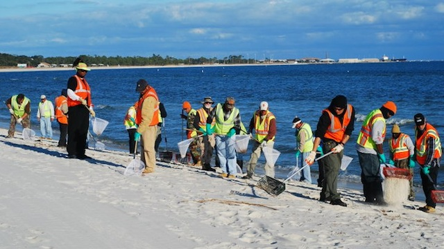 SUSPENDED. Cleanup crews manually sift sand on Barrancas Beach, Florida after the 2010 oil spill. Photo courtesy of BP America