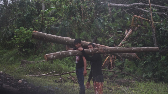 HIT AGAIN. Despite the devastation of Typhoon Pablo in the province of Agusan del Sur, loggers continue to haul fallen logs along the national highway. Photo by Karlos Manlupig