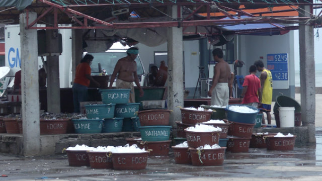 Buyers shun Cavite fish after oil spill