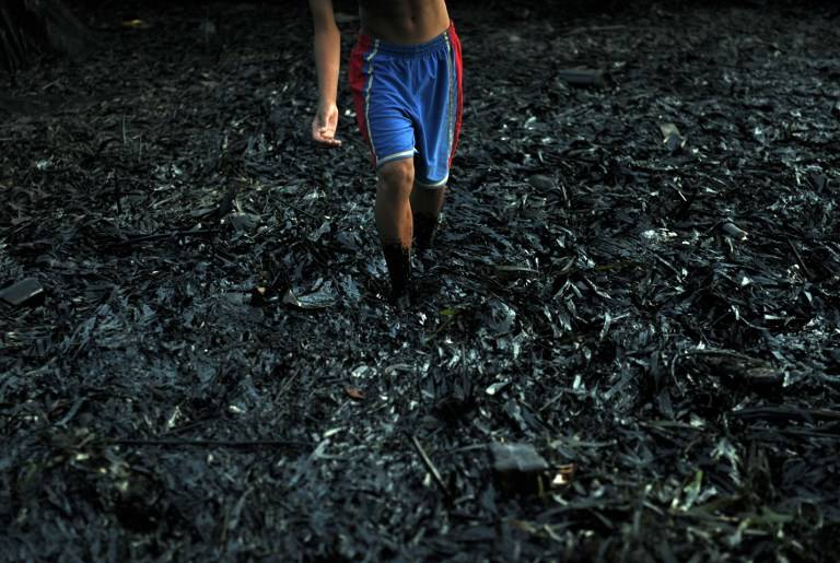 OIL-COATED MANGROVES. A resident walks through a mangrove area affected by an oil slick near the site of a ferry and freighter collision in Cordoba town near Cebu City, August 18, 2013. Photo by AFP/Ted Aljibe