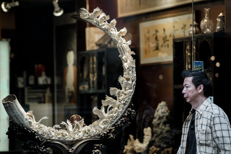 This picture taken on February 27, 2013 shows a pedestrian walking past a shop window displaying a carved ivory tusk in Hong Kong. AFP PHOTO / Philippe Lopez