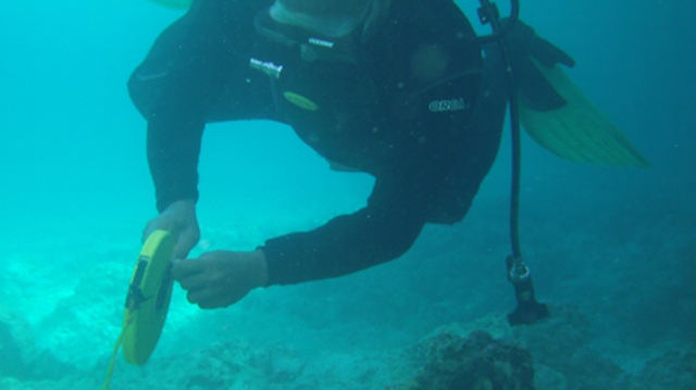 DAMAGE ASSESSMENT. A Philippine Coast Guard diver inspects the coral damage near the ships's hull. Photo courtesy of PCG