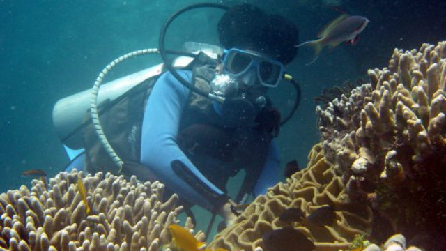 UNDERSEA ADVENTURE. Diving is one of the most popular activities that tourists enjoy in the Philippines. Photo by AFP.