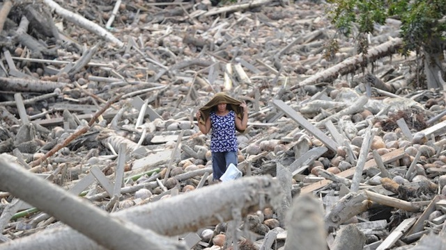 TRAGEDY IN MINDANAO. A resident searches for missing relatives amongst the debris, swept away by flash floods at the height Typhoon Bopha in New Bataan, Compostela Valley province on December 7, 2012. AFP PHOTO/TED ALJIBE