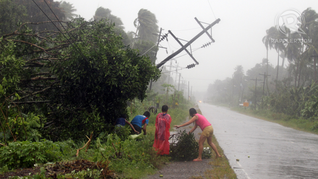 TOPPLED POSTS. Residents are seen along the highway beside damaged trees and toppled electric power line while Typhoon Pablo hit southern Philippine city of Tagum on December 4. Photo by Jef Maitem