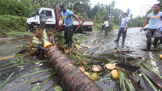 TRAIL OF DESTRUCTION. 'Pablo' made landfall in Davao Oriental and swept through Mindanao and the Visayas leaving a trail of debris and lost lives. Photo by Karlos Manlupig