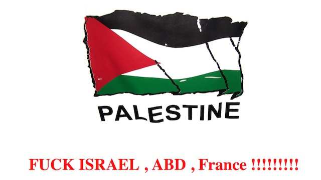 HACKED. Screenshot of a Palestinian flag on the website attacked by hackers