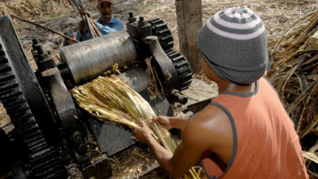 list of sugar mills in the philippines pdf