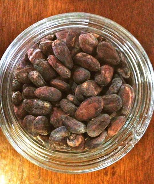 CACAO BEANS fermented and ready for roasting