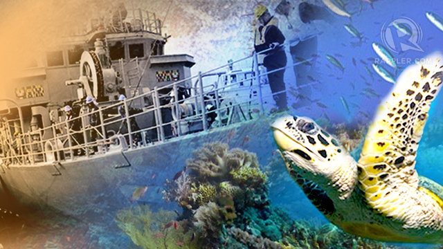 ENVIRONMENTAL DISASTER. The USS Guardian destroyed at least 1,000 sqm of coral, more than 1% of Tubbataha's marine protected area mandated by law. Graphic by Emil Mercado