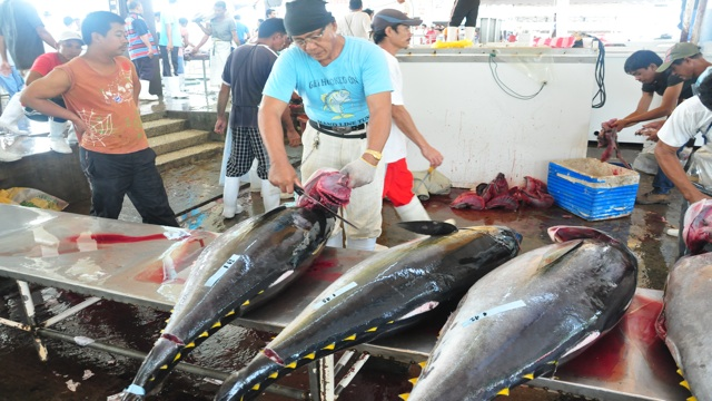 TUNA CAPITAL. The results of the 5-day meet are being anticipated even by members of the tuna industry in General Santos City, the country's tuna capital. Photo by Edwin Espejo