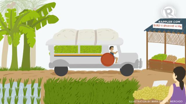 Farm-to-market roads: A farmer's journey