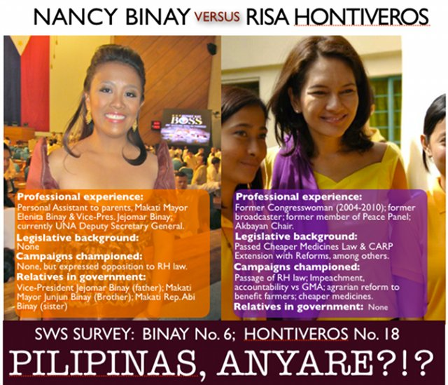 FACE OFF. Former Akbayan Rep Risa Hontiveros' qualifications is compared to the vice president's daughter Nancy Binay in a meme that has made the rounds on the Internet. Photo from Facebook